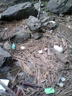 保津川のゴミ