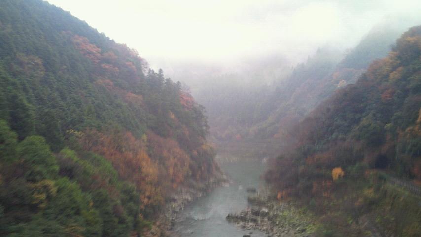 雨に煙る散り紅葉の保津峡