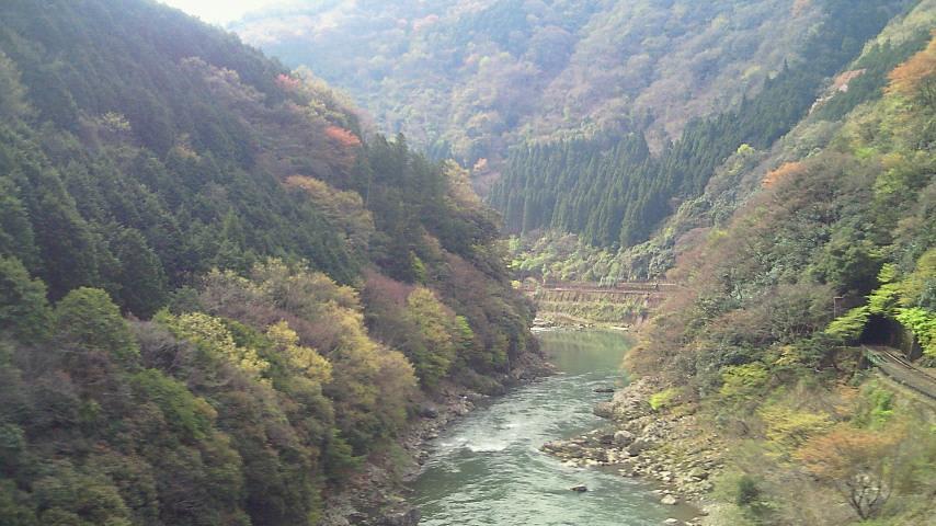 新緑へと移りゆく保津峡