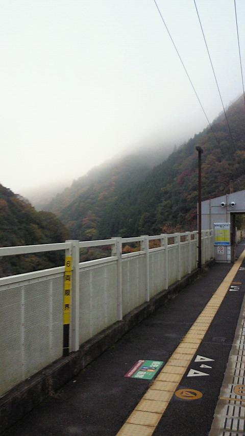 保津峡駅からの紅葉