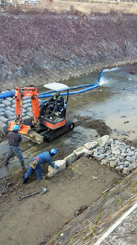 西川の自然再生工事、今日のようす